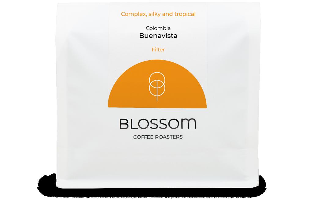 Buenavista bag